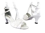 1659 194 Lace White Glitter_White Satin