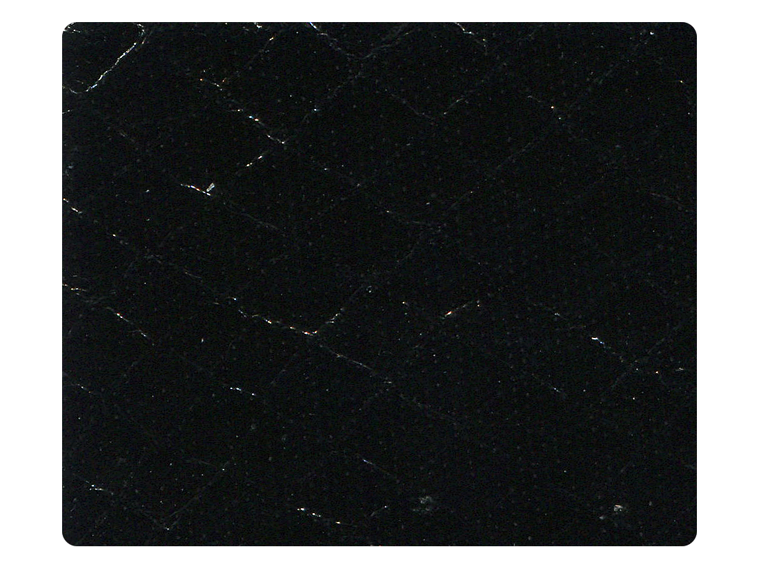 222 Snake Black Fabric Swatch