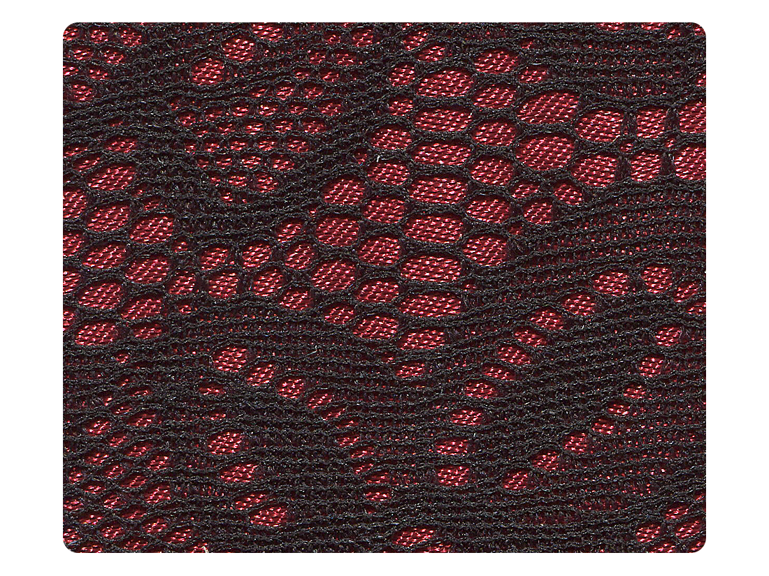 257 Red & Black Lace Fabric Swatch