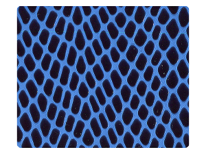 36 Blue Snake PU Fabric Swatch