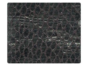 71 Snake Silver_Black Satin Fabric Swatch